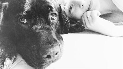 dog love hundi mybaby sleep