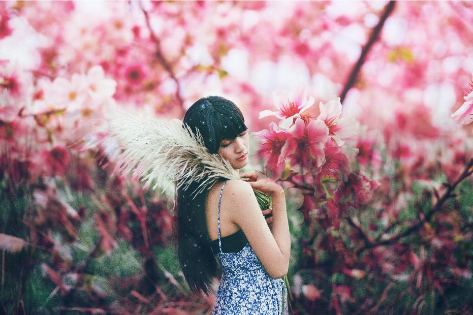 #wapflowerportrait #FreeToEdit #portrait #people #flowers #sakura