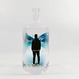 art abstract surrealism surreal bottle