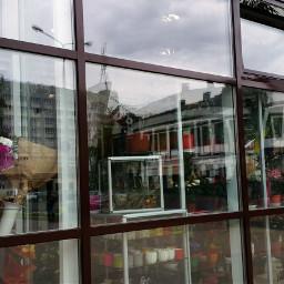 freetoedit levygrett window emotions shop