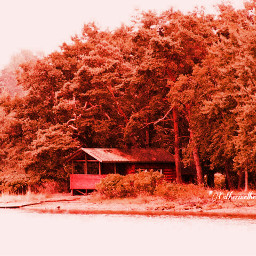 nature photography red color hdr