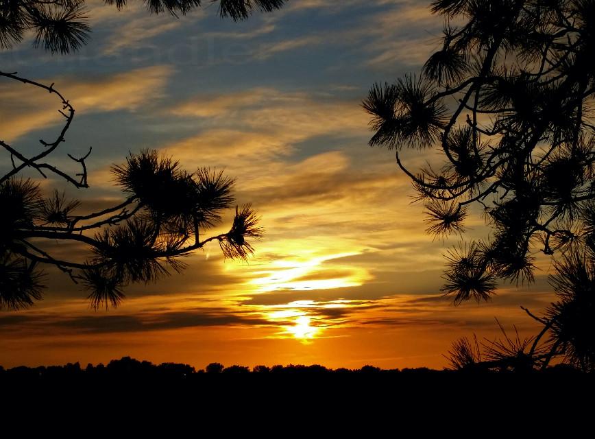 #sky #sunset #clouds #photography #nature