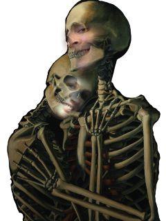 skeletal faces