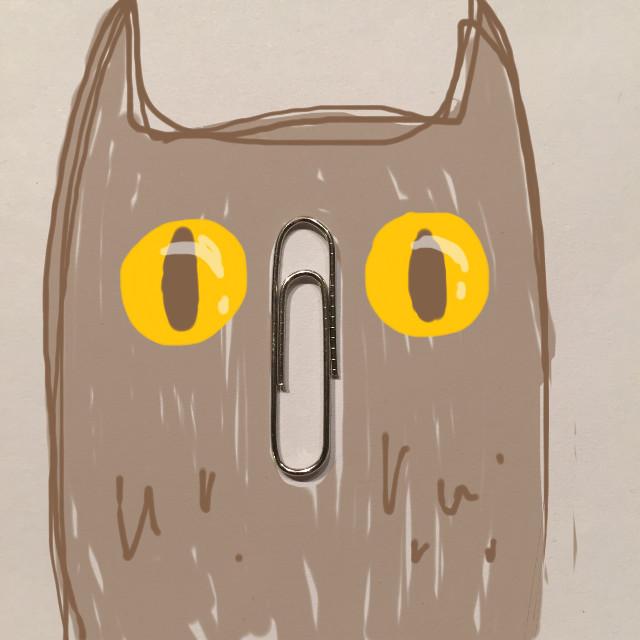 Night owl…