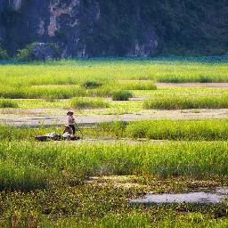 green landscape grass river vanlong