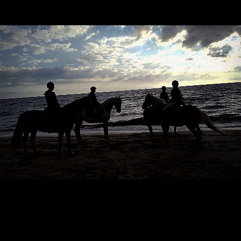 Ride on the beach #sunset  #beach #colorful #emotions #nature #people #summer #travel  #netherlands  #horse