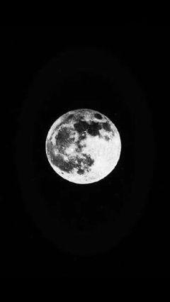 freetoedit art moon blackandwhite photography