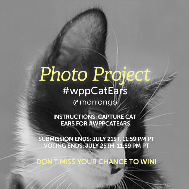 Cat's are mysterious creatures, but we can often guess their feelings by their ears, their perky curiosity or their lowered menace. Focus your camera on cat ears, give yourself a pair, or take this challenge in a whole new direction. Share your pics with #wppCatEars . (Banner image by @morrongo )