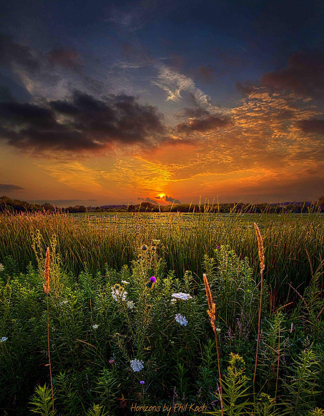 Wisconsin Morn.  #colorful #cute #emotions #love #nature #photography #summer #travel #rural #country #canon #peace #sunrise #green #outdoors #inspiration #Light #Clouds #landscape