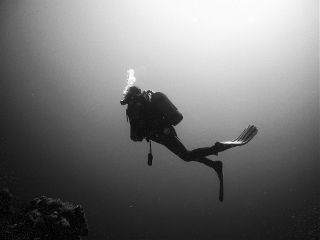 freetoedit water underwater divers diving