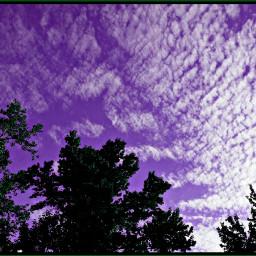 colorchangeup nettesdailyinspiration sky myphotography purple