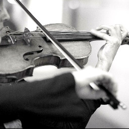 blackandwhite violine konzert people photography