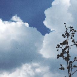 simplicity minimalism nature naturephotography clouds
