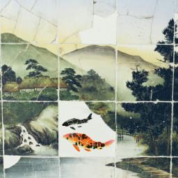 photography japan tajimi fish tile