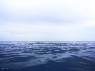 blue ocean opensea mexico travel