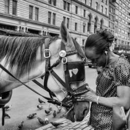 photography streetphotography blackandwhite newyork freetoedit