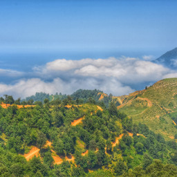 photography nature hdr clouds jungles