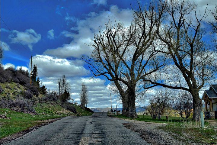 #nature,#landscape,#road,#trees,#freetoedit